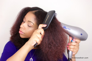 Ion Conditioning Ionic-Ceramic Tourmaline Dryer and Denman Paddle Brush